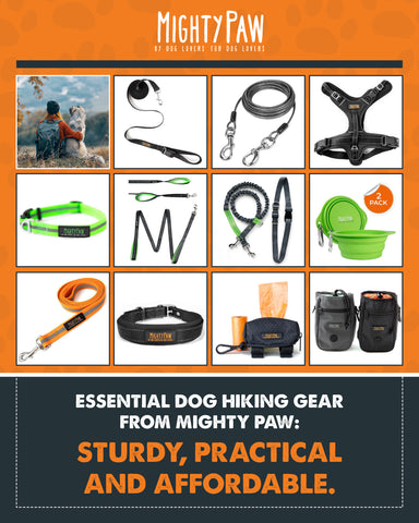 Essential Dog Hiking Gear From Mighty Paw: Sturdy, Practical and affordable
