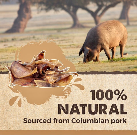 The Mighty Paw Naturals Pig Ears are 100% all-natural and sourced from Columbian pork