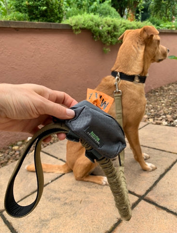 The Mighty Paw Poop Bag Holder Easily Attaches to Any Leash