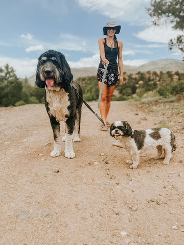 Walking two different size dogs on the Mighty Paw Double Dog Leash