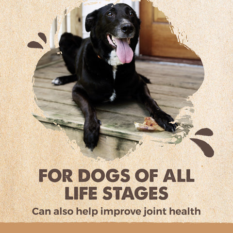 Mighty Paw Naturals Pig Ears are for dogs of all life stages and help improve joint health