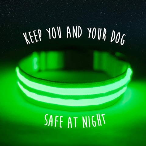 The Mighty Paw LED Dog Collar keeps you and your dog safe at night