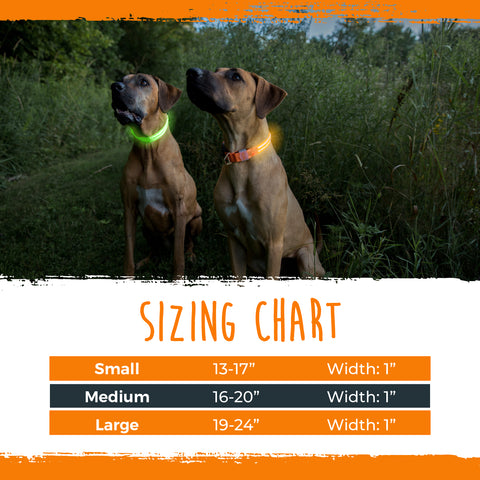 Sizing Chart for the Mighty Paw LED Dog Collar