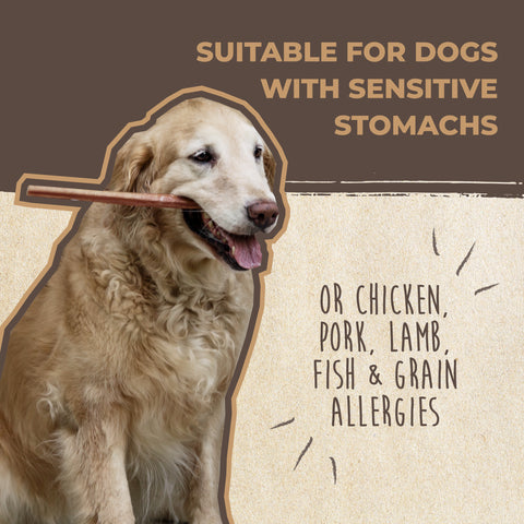 Mighty Paw Naturals Bully Sticks are suitable for dogs with sensitive stomachs