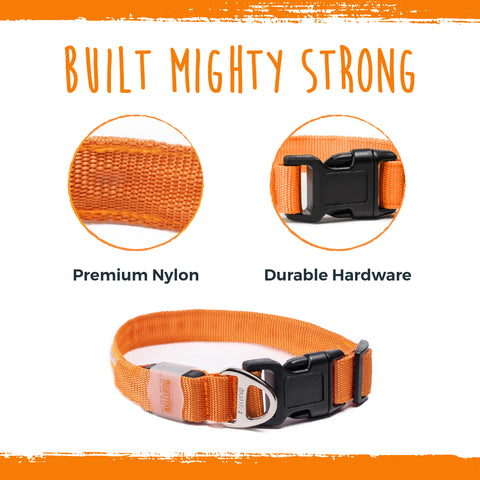 The Mighty Paw LED Dog Collar is built mighty strong