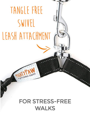 6' Chew Proof Cable Leash