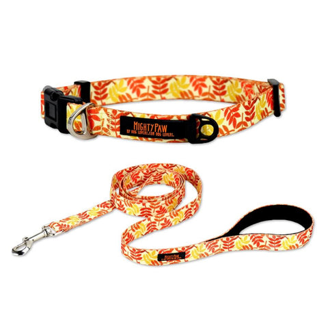 Fall Dog Collar & Leash Bundle