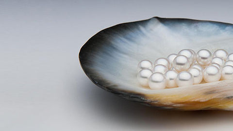 akoya pearls - ame jewellery