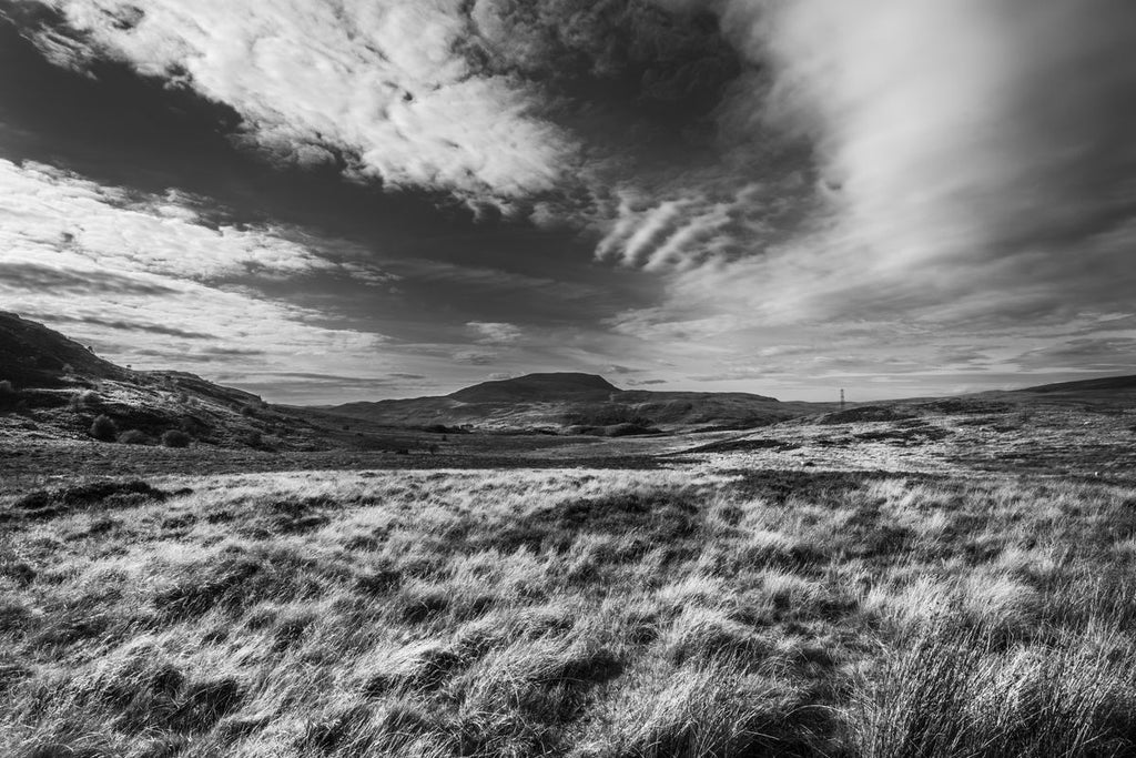 Arenig Wilderness