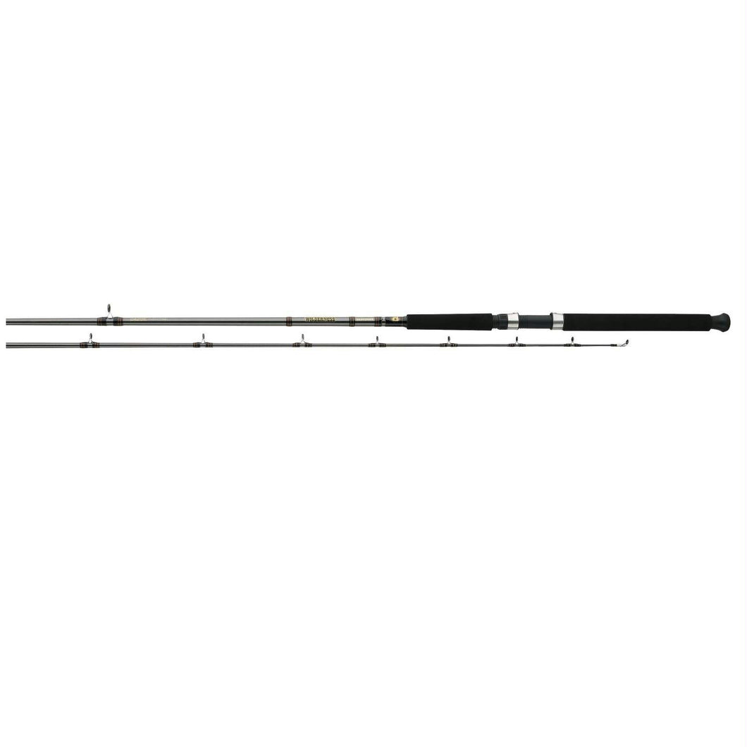 Daiwa Wilderness Spec Rod 2 Pieces Line Wt 15-30 WDDR902MR