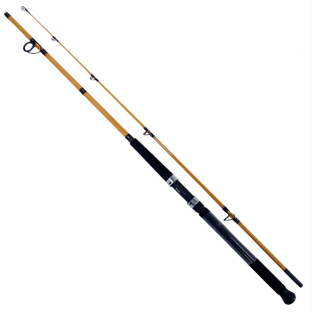 Daiwa FT Surf Rod 2 Pieces Line Wt 10-20 FTS1002MFS