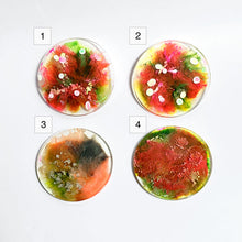 SAMPLE SALE - Alcohol Ink Coasters