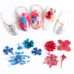 Assorted Real Dried Pressed Mini Flowers for Resin Jewellery or Nail Art