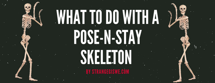 What to do with a Pose-N-Stay Skeleton