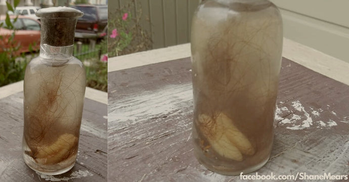Someone found a 'Witch Bottle' by the Mississippi River with teeth and hair inside