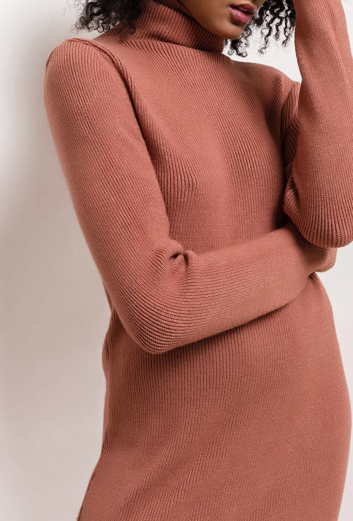 Knit Dress With Turtleneck