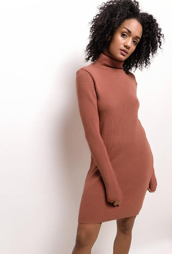 Rust Knit Dress With Turtleneck