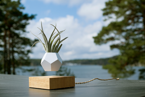 Flyte - Lyfe Floating Planter