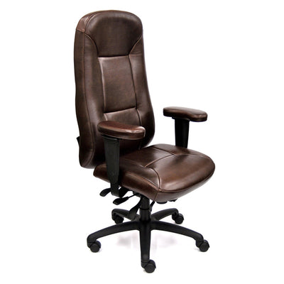 Lifeform Lifesaver Leather Executive Chair with Memory Form
