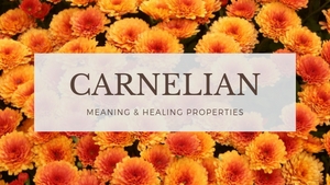 Carnelian Meaning & Healing Properties-Sacred Jewels Cosmetics