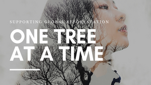 Giving Back One Tree at a Time - Together We Can!