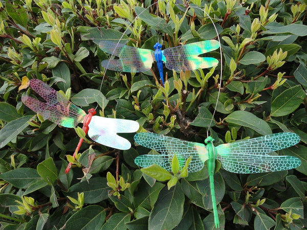 Solar Dancing Dragonfly Garden yard Flying on flower bed