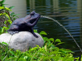 Garden Pond Fountain Frog spitting water Solar Powered pump Swimming pool