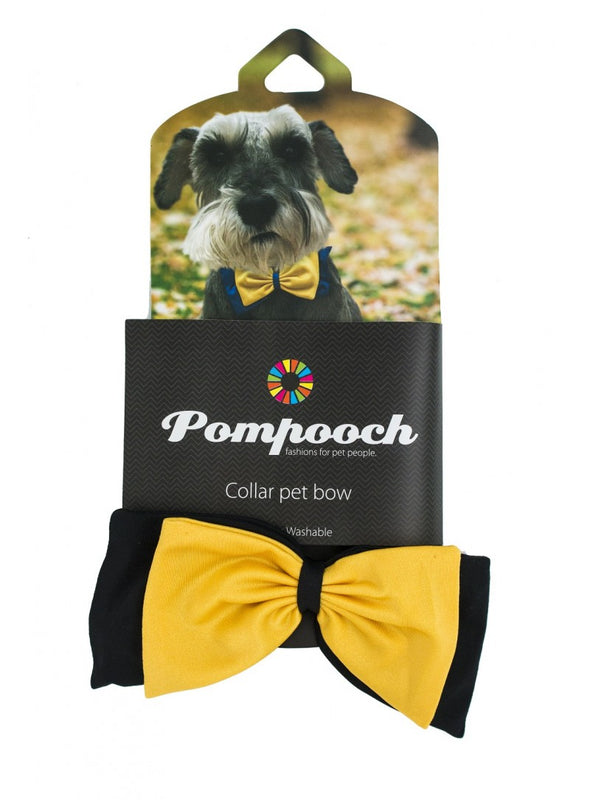 Mizzou Black and Gold Pet Bow Tie