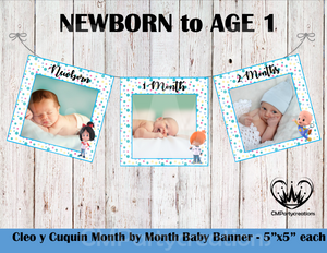 Cleo y Cuquin**BLUE** Baby's 1st Year Banner Month by Month