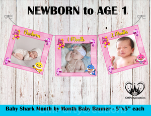 Baby Shark Girls 1st Year Banner Month by Month
