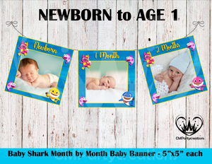 Baby Shark Boys 1st Year Banner Month by Month