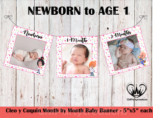 Cleo y Cuquin **PINK** Baby's 1st Year Banner Month by Month