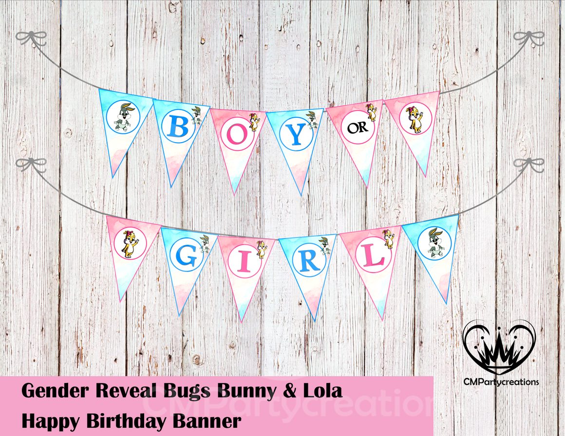 Bugs and Lola Gender Reveal Banner
