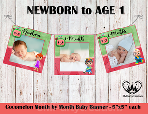 Cocomelon Boy Baby's 1st Year Banner Month by Month