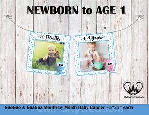 GooGoo & GaaGaa **BLUE** Baby's 1st Year Banner Month by Month