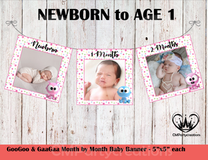 GooGoo & GaaGaa **PINK** Baby's 1st Year Banner Month by Month