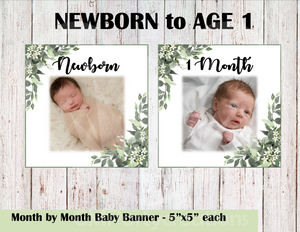 Baby's 1st Year Banner Month by Month
