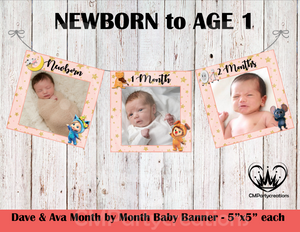 **PINK**Dave & Ava Baby's 1st Year Banner Month by Month