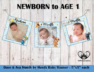 **BLUE**Dave & Ava Baby's 1st Year Banner Month by Month