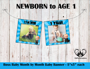 Boss Baby Baby's 1st Year Banner Month by Month