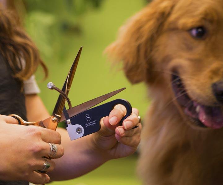 Shear Saver® For Pet Groomers
