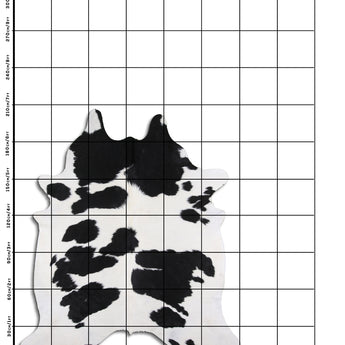 Cowhide Rug Black and White C505