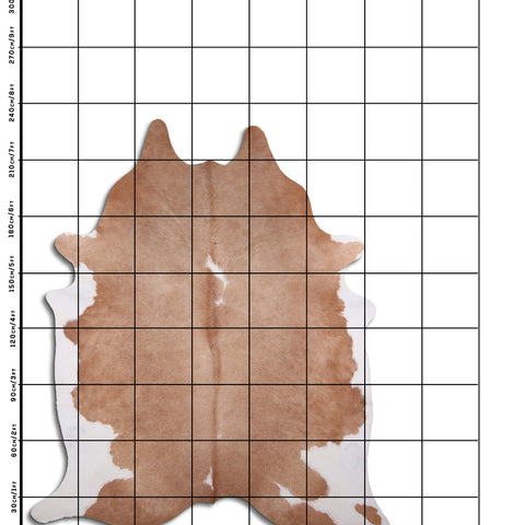 Cowhide Rug Brown and White C554