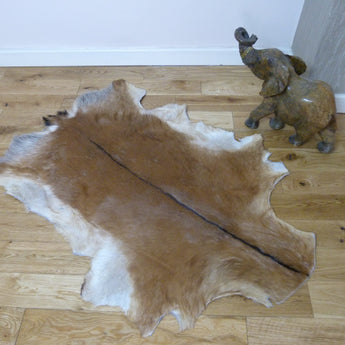 Brown goat skin hide