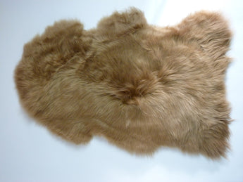 Sheepskin Rug UK - Camel