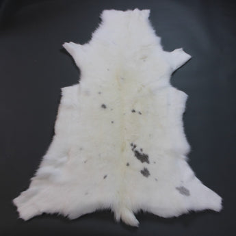 X-Large White Reindeer Hide Rug WR200