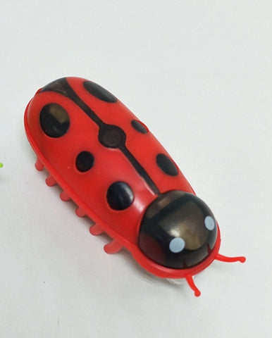 Amazing Robot Bug Toy