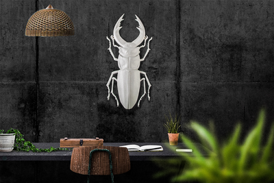 Faux Insect Taxidermy Beetle // Bug Wall Art by Atelier Article - Design Atelier Article