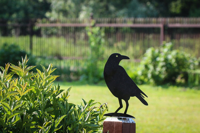 Metal garden decor scarecrow -Raven- to serve the purpose of pleasing ones eyes and getting rid of unwanted guests // FREE SHIPPING - Design Atelier Article