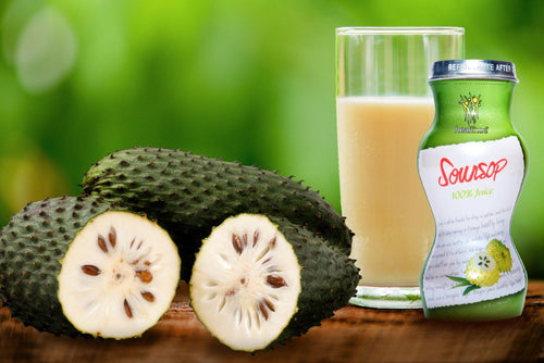 HEALTHEE Soursop Juice - 12 bottles x 180 ml (6 oz.)